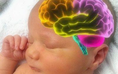 Educación y aprendizaje desde el vientre materno